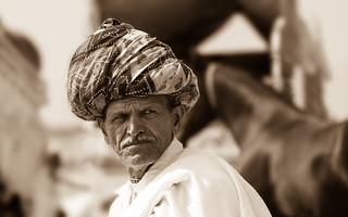 Horse trader - Pushkar