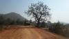 On the way to Baranti village, Purulia District, West Bengal, India. (biswarupsarkar72) Tags: purulia baranti westbengaltourism tourismofbengal ruralbengal beautifulbengal tribalvillageofbengal tribalvillagesofbengal peopleofruralbengal
