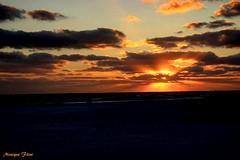Florida Sunset (moniquef123) Tags: sunset sun cloudsstormssunrisessunsets clouds beach florida rays orange landscape nature weather weatherphotography sea coast