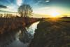 Tranquility (der_peste (on/off)) Tags: landscape sunset sundown reflections rural tree sky sun water creek bach wiese gegenlicht backlight backlit