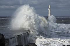 Winter Waves (steve_whitmarsh) Tags: aberdeen scotland storm water sea ocean splash harbour wall waves