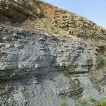 Upper Arnheim Formation thumbnail