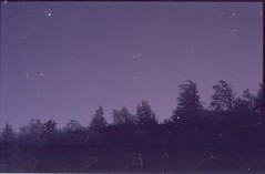 (✞bens▲n) Tags: minolta cle superia premium 400 rokkor 40mm f2 film analogue japan gunma trees cold