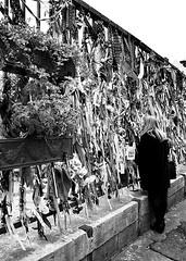 IMG_5465 (Kathi Huidobro) Tags: borough londonstreets tribute urbanphotography urbanscene blackwhite bw monochrome graveyard winchestergeese memorial crossbones inmemory streetphotography southlondon london candid
