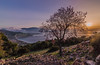 Spring sunset (Vagelis Pikoulas) Tags: sun sunset landscape view sea seascape nature psatha greece europe march spring 2018 tokina 1628mm canon 6d tree