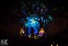 Bears on the Tree (Laura K Bellamy) Tags: disney world disneyworld orlando travel tree life projections night