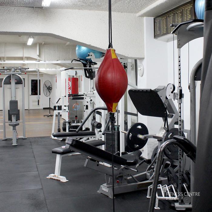City tatts gym