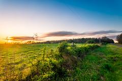 Youngsville, NC Landscape (ashercurri) Tags: youngsville nc north carolina landscape photography field grass sunset sun sky sony a7ii alpha big clouds farm land pasture