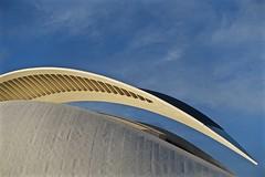 Cité des Arts et des Sciences  -  Valencia (Iris_14) Tags: valencia españa architecture arts espagne spain santiagocalatrava calatrava citédesartsetdessciences ciutaddelasartesydelasciencias arquitectura palaureinasofia