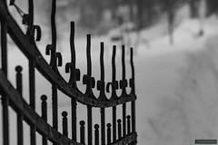 The gate (kentkirjonen) Tags: canon 80d sweden sverige dalarna ue explore utforska cold winter vinter snow snö kallt steel stål wood trä struktur structure arkitektur architecture gate gates grind grindar smide blacksmith