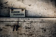 You can trust it (Melissa Maples) Tags: münchen munich deutschland germany europe nikon d3300 ニコン 尼康 nikkor afs 18200mm f3556g 18200mmf3556g vr deutsch german text sign wall hundeparken
