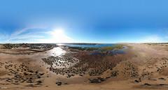 360 pano salt flats (Georgie Sharp) Tags: port augusta patterns 360