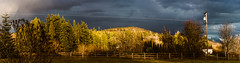 March (Danielle Bednarczyk) Tags: sunset weather sun storm contrast sky darksky tree trees forest farm countryside pano panoramic scenic rural washington wa