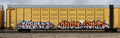 Lesen/Rukis (quiet-silence) Tags: graffiti graff freight fr8 train railroad railcar art lesen sdk rukis tio etc nokl articulated nokl798430