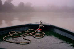 Misty morning on the jungle river (Wanda Amos@Old Bar) Tags: sabah wandaamos boat dawn forest mist river rope water atmosphere kinabatanganriver