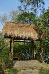 Xixi National Wetland Park 西溪國家濕地公園 (syue2k) Tags: zhejiang 浙江省 china hangzhou 杭州 xixi national wetland park 西溪國家濕地公園