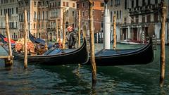 La Gondola (hjuengst) Tags: venice venedig venezia italy italien italia gondel gondola canalegrande sanpolo