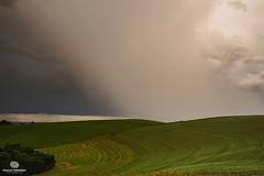 (pauloternoskiphoto) Tags: landscape paisagem natureza wallpaper céu plantação chuva tempestade storm rain cloud nuvem coth5 pond outside green neige
