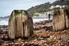DSCF9703 (Speedy349) Tags: ventnor stumps groynes beach pepples seafron