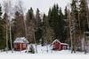 DSC_2537 (vargandras) Tags: cottage red tree backyard lakeside snow nikkor 1685mmf3556gvr