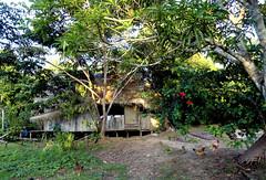 San Martín de Amacayacu (Anciet) Tags: amazonas colombia jungle south america