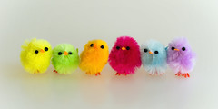 Six (hehaden) Tags: chick fluffy toy colourful bright whitebackground easter row line sel90m28g