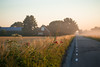 20170709-Canon EOS 6D-8305 (Bartek Rozanski) Tags: hazerswoudedorp zuidholland netherlands hollyhock mist morning field rural house greenheart groenehart holland summer sunrise