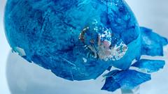 I have the blues (Renate Bomm) Tags: fe70300mmf4556goss ihavetheblues renatebomm sonyilce6000 macromondays egg easteregg blue blau theblues 100 ostern easter macro mondays creative renate bomm makro