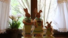 Buona Pasqua! Happy Easter! (Raffa2112) Tags: decorazionipasquali coniglietti finestra tendine fiori pasqua easter easterdecorations bunnies curtains window flowers canoneos750d raffa2112