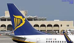 EI-EKP LMML 21-03-2018 (Burmarrad (Mark) Camenzuli Thank you for the 18.9) Tags: airline ryanair aircraft boeing 7378as registration eiekp cn 35028 lmml 21032018