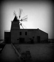 Mulino - Saline - Marsala (dona(bluesea)) Tags: mulino mill marsala sicilia sicily