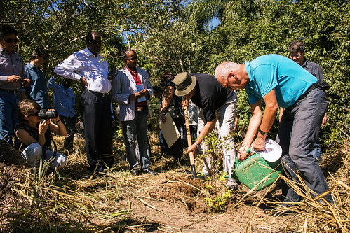 Bonn Challenge 3.0 High level meeting. Visit to Itapu restoration trail and tree planting ceremony.