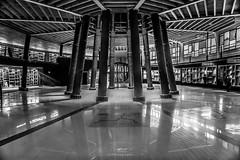 Yo soy el Individuo. Alguien segregaba planetas,  ¡Árboles segregaba! (.KiLTRo.) Tags: panguipulli regióndelosríos chile cl kiltro arquitectura architecture museo museum reflection monochrome interior light perspective