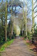 Walking back to the Hall (zawtowers) Tags: ruffordoldhall rufford lancashire national trust property hesketh family residence gradei listed building built 1530 historic house walking back tree lined path gardens