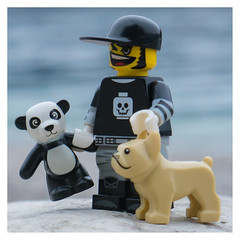having fun (genelabo) Tags: lego minifigure walchensee jochberg lightroom sitting lake see bayern altach cheesy panda dog hund sony 35mm genelabo