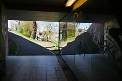 Unterführung Kurpflalzbrücke in Mannheim (Ogl1) Tags: brücke bridge spiegelung reflection spiegel mirror mannheim
