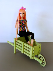 Sitting in the wooden wheelbarrow (Deejay Bafaroy) Tags: barbie fashionistas doll puppe 60 patchworkdenim asianmold mattel portrait porträt bow schleife pink rosa red rot yellow gelb green grün blue blau wood holz wheelbarrow schubkarre 16 scale playscale miniature miniatur