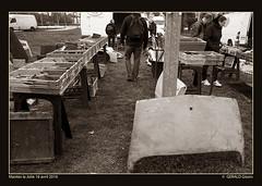 mantes16 (36) (gerbor) Tags: mantes manteslajolie ami6 ami8 bx citroen cx c6 c4 chapron citroën cabrioletds clubds ds dsidclubdefrance ds20 ds19 ds21 ds23 ds23break eure expo exposition eurocitro facebookgeraldfocigisors gerald geraldfoci geraldgisors geraldfocinet gerbor gs id icccr motocitroen nikon nikonds3a normandie olivierdeserres rosalie retromobile sm traction typeh tubeh tractionavant tractionuniverselle vexin v