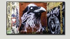 Tag - Bordeaux Rive Droite (Jean-Pierre Verduzier) Tags: tag streetart bombe peinture ruines bordeaux taggers peintres couleur dessin art tableaux artistes