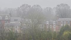 mist (R.Duran) Tags: durham england inglaterra europa europe niebla mist
