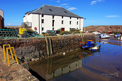 Dunbar 21 April 2018 00501.jpg (JamesPDeans.co.uk) Tags: landscape water lh437 northsea firthofforth unitedkingdom britain dunbar wwwjamespdeanscouk leithlh landscapeforwalls jamespdeansphotography uk digitaldownloadsforlicence forthemanwhohaseverything ships gb greatbritain transporttransportinfrastructure lh4 lowtide fishingboatregistrations shore colour yellow reflection lobsterpots scotland fishingindustry fishingboats eastlothian industry printsforsale boats sea lothian coast harbour europe