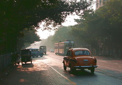 before the morning rush hour (peter.velthoen) Tags: tram trolley street india calcutta kolkata morninglight taxi ambassador road tree bird car ram hindustanambassador automotive streetview