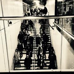 Le flux  incessant des pas dans l'escalier... (woltarise) Tags: berriuqam station métro foule sepia iphone6s streetwise escalier trafic montréal