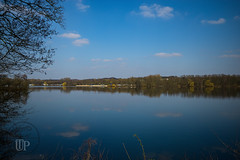 Unterbacher See (Sony_Fan) Tags: düsseldorf erkrath see natur wasser h2o frühling 2018 landschaft nature thomas sigma umbach art 28 19mm schwelm germany himmel deutschland landscape clouds cloud wolken mirror spiegel spiegelbild blue blau baum wasserlinie waterline coast sony alpha 6000