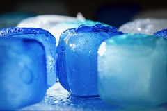 Blue (Paco RM) Tags: theblues cold ice macromondays blue