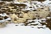 _DSC0821 (Ismael Gaudin) Tags: gullåkra landscape sweden staffanstorp winter snow