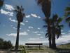 Asiento con vistas (Colector_Col) Tags: palmeras banco playa cielo azul nubes