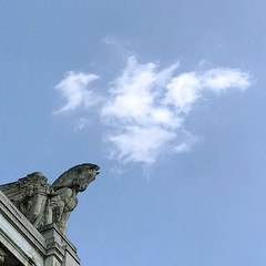 can't you see an owl? (Paolo Cozzarizza) Tags: italia lombardia milano scorcio statua fregio cielo