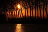 In between the trees - adjusted to my favor (Drummerdelight) Tags: shillouettes sunset intothesun sunsetting trees