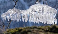 Nature fantasy (Arnt Kvinnesland) Tags: ice art frozen nature winter outdoor is frost kulde vinter vår brattlandsdalen suldal rogaland norway